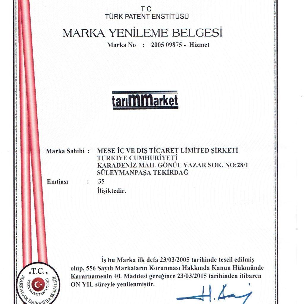 Patent Enst.mese 001
